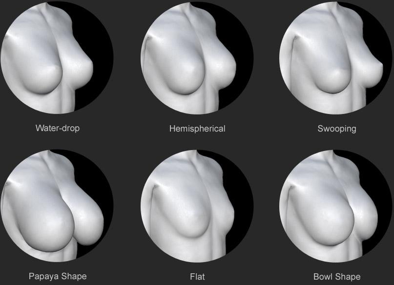 Character Creator - Custom Morphs